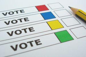 blumer_vote.jpg