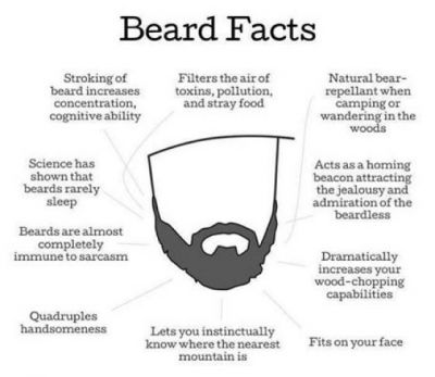 Image result for beards are awesome